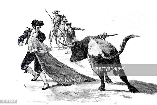 torero fight: bull running against man holding red curtain - bullfighter stock illustrations, clip art, cartoons, & icons