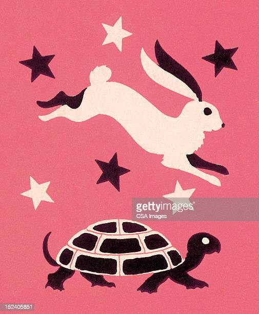 tortoise and hare - two animals stock illustrations
