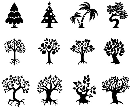Tree collection black & white royalty free vector icon set - gettyimageskorea
