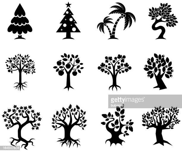 stockillustraties, clipart, cartoons en iconen met tree collection black & white royalty free vector icon set - appelboom