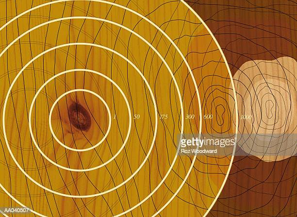 tree, cross section showing growth - tree rings stock illustrations, clip art, cartoons, & icons