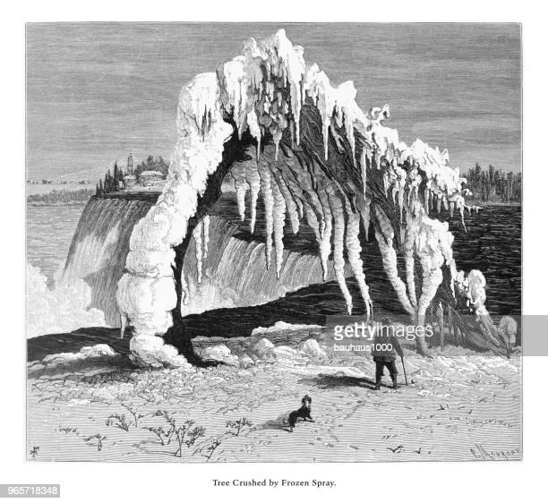 tree crushed by frozen spray, niagara falls, new york, niagara falls, ontario, american victorian engraving, 1872 - lake ontario stock illustrations, clip art, cartoons, & icons