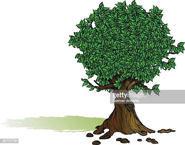 tree full of leaves - tree trunk stock illustrations, clip art, cartoons, & icons