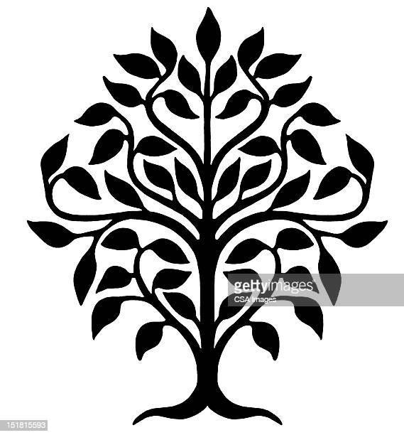 tree - branch stock illustrations