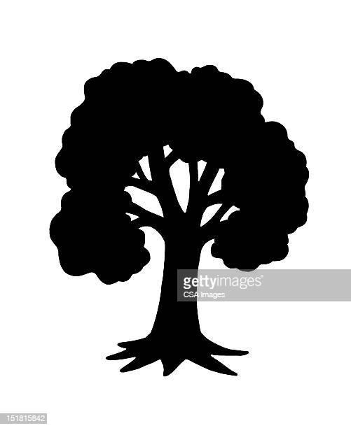 tree - illustration technique stock illustrations