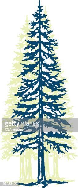 tree - pine wood material stock illustrations, clip art, cartoons, & icons