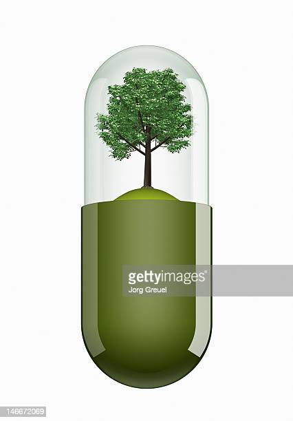 a tree inside a capsule - digital composite stock illustrations