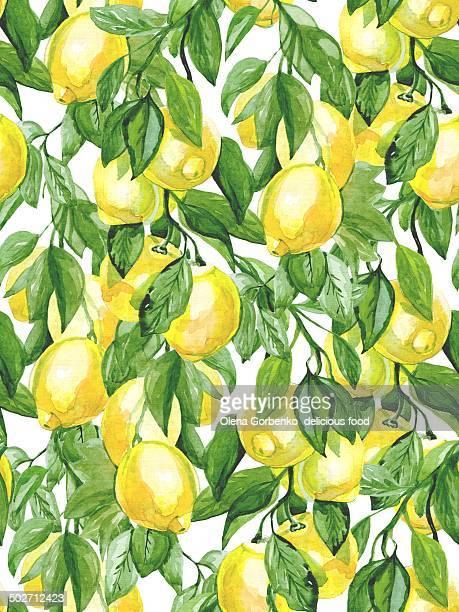 ilustrações, clipart, desenhos animados e ícones de tree of lemons.watercolor - limão amarelo