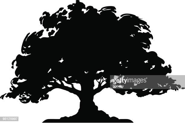 tree - silhouette (vector) - deciduous tree stock illustrations, clip art, cartoons, & icons