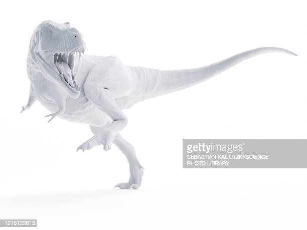 t-rex, illustration - theropod stock illustrations