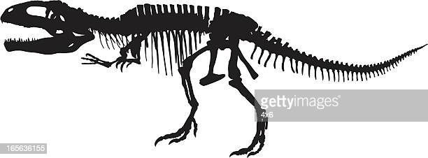 t-rex skeleton - animal skeleton stock illustrations, clip art, cartoons, & icons