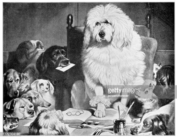 trial by jury or laying down the law by sir edwin henry landseer - 19th century - jury entertainment stock illustrations