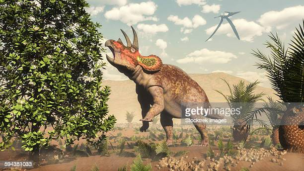 Triceratops grazing on a magnolia tree next to cycas.