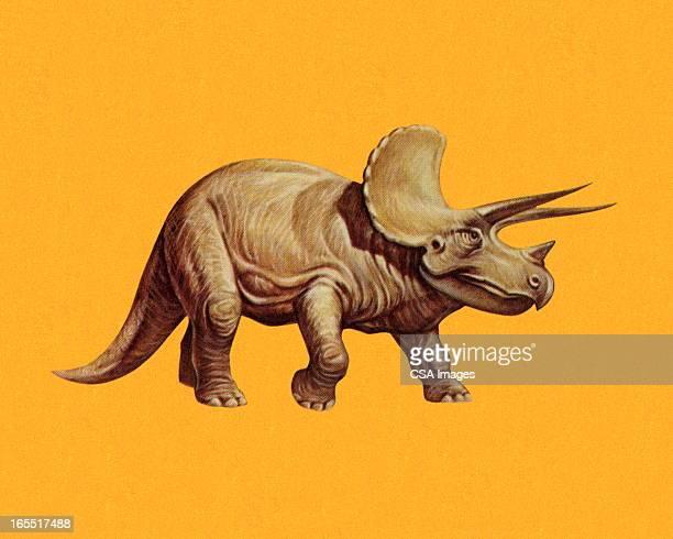 ilustrações de stock, clip art, desenhos animados e ícones de triceratops - dinossauro desenho