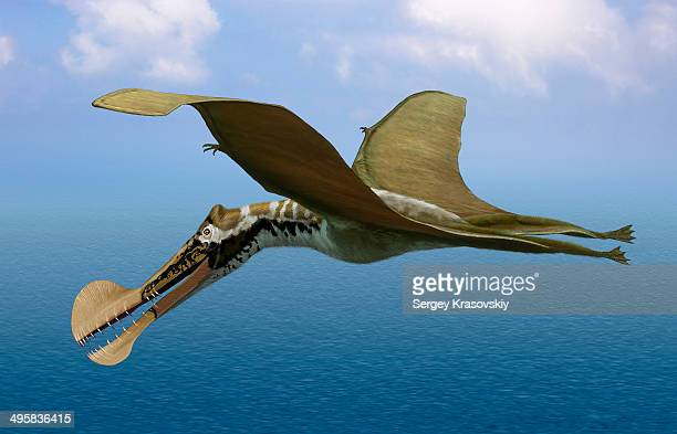Tropeognathus mesembrinus, a large pterosaur from the Late Cretaceous Period of South America.