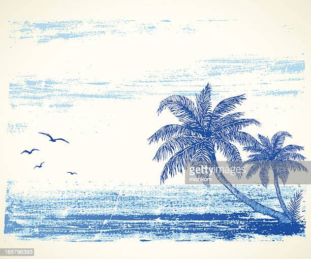 tropical beach drawing - coconut leaf stock illustrations, clip art, cartoons, & icons
