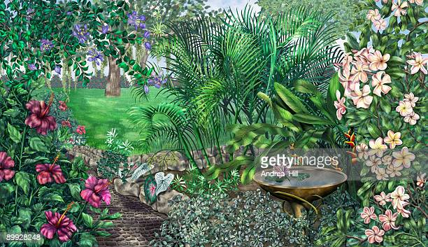 tropical garden scene - queensland umbrella tree stock illustrations