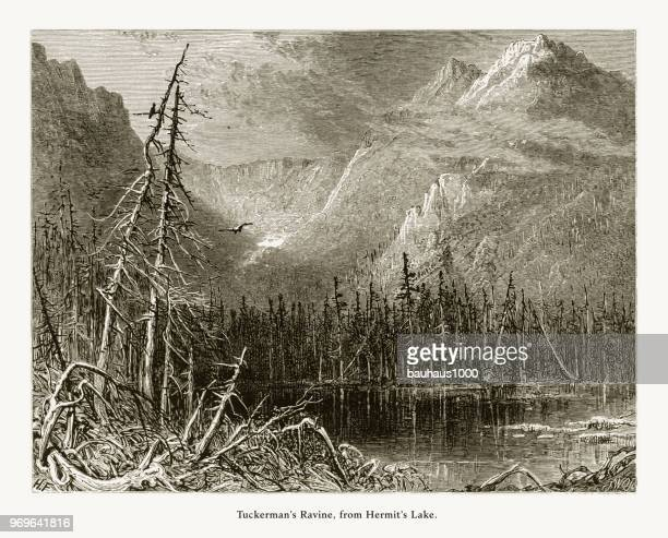 Tuckerman's Ravine from Hermit's Lake, White Mountains, New Hampshire, United States, American Victorian Engraving, 1872