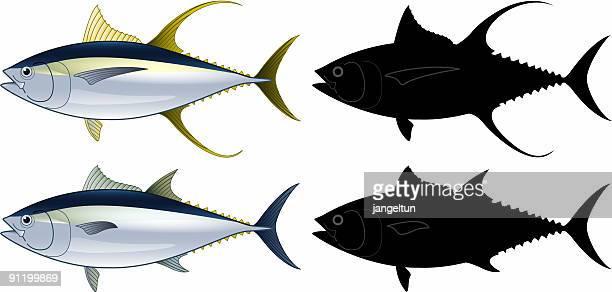 tuna fish - tail fin stock illustrations, clip art, cartoons, & icons