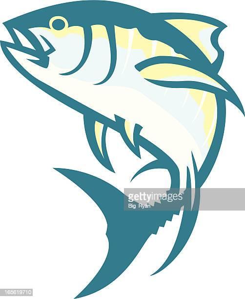 ilustraciones, imágenes clip art, dibujos animados e iconos de stock de atún - bonito del norte