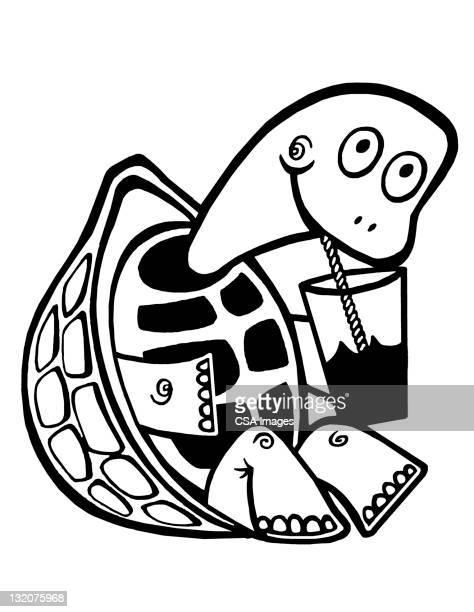 turtle drinking from glass - tortoise shell glasses stock illustrations, clip art, cartoons, & icons