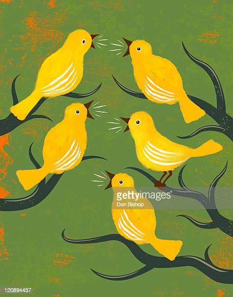 ilustrações de stock, clip art, desenhos animados e ícones de tweeties social birds illustration - canto de passarinho