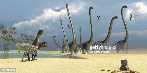 Two Allosaurus predators prepare for an attack on a herd of Omeisaurus.