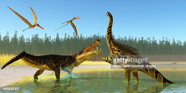illustrations, cliparts, dessins animés et icônes de two anhanguera reptiles fly above as a kaprosuchus reptile confronts an agustinia dinosaur. - crocodile