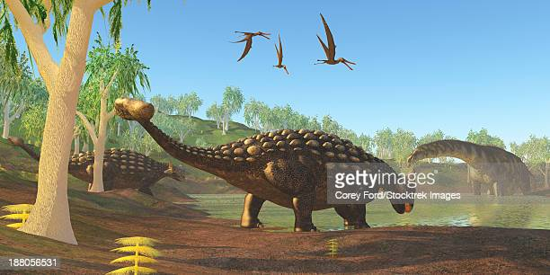 Two Ankylosaurus dinosaurs come down to a swamp to drink as an Argentinosaurus grazes on duckweed.