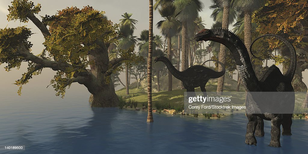 Two Apatosaurus dinosaurs visit an island in prehistoric times. : stock illustration