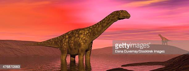 Two Argentinosaurus dinosaurs amongst a colorful red sunset.