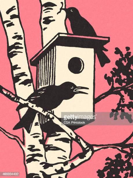 2 つの鳥の巣箱