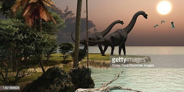 Two Brachiosaurus dinosaurs enjoy a beautiful sunset.
