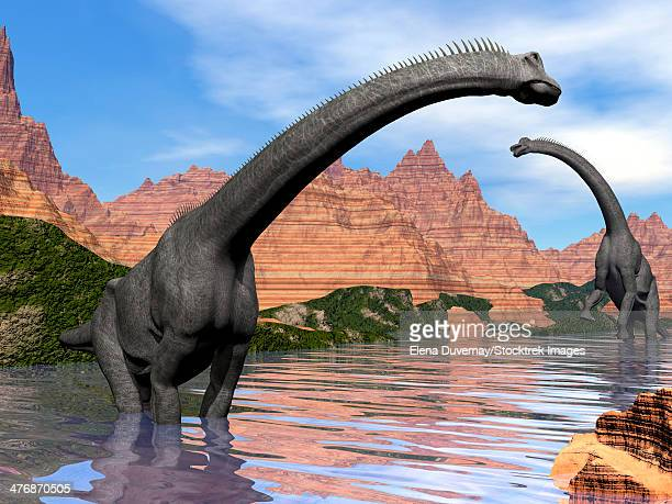 illustrations, cliparts, dessins animés et icônes de two brachiosaurus dinosaurs in water next to red rock mountains on a beautiful day. - afrique paysage
