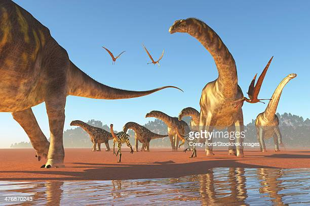 Two Deinocheirus move along with a herd of Argentinosaurus dinosaurs eating any insects and small animals that are stirred up.