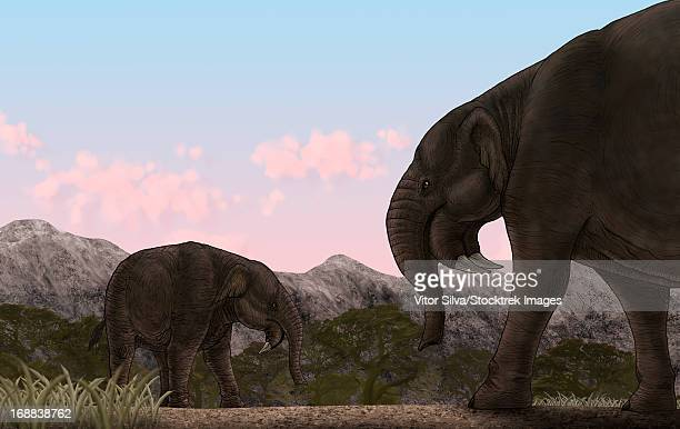 Two Deinotherium, an extinct animal of the Miocene epoch, relative to modern day elephants.