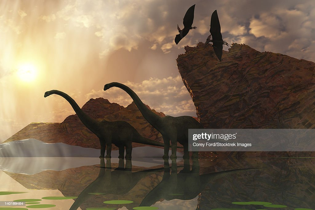 Two Diplodocus dinosaurs and two flying pterodactyl birds greet the early morning mist. : Ilustración de stock