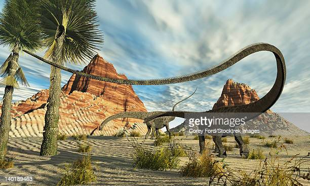 Two Diplodocus dinosaurs search for food in a desert landscape.