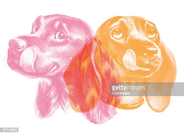 two dogs licking their lips - licking stock illustrations, clip art, cartoons, & icons