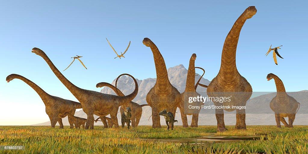 Two Dracorex dinosaurs walk in front of a Malawisaurus herd. : Ilustración de stock
