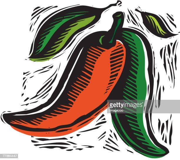 two hot peppers - red chili pepper stock illustrations, clip art, cartoons, & icons