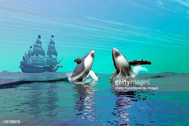 two humpback whales breach the ocean surface near a passing ship in full sail. - humpback whale stock illustrations, clip art, cartoons, & icons