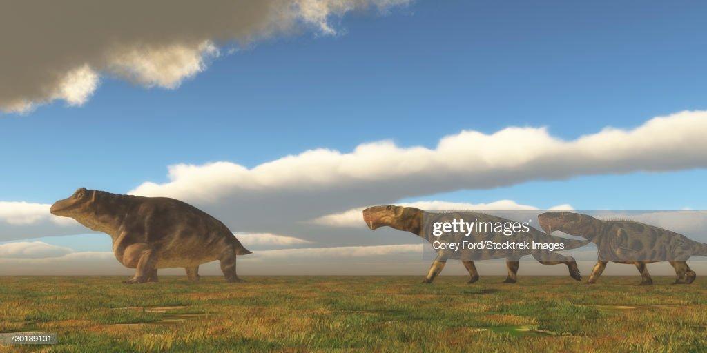 Two Inostrancevia dinosaurs go after a Keratocephalus on a grassy plain. : stock illustration