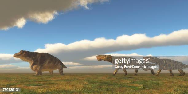 Two Inostrancevia dinosaurs go after a Keratocephalus on a grassy plain.