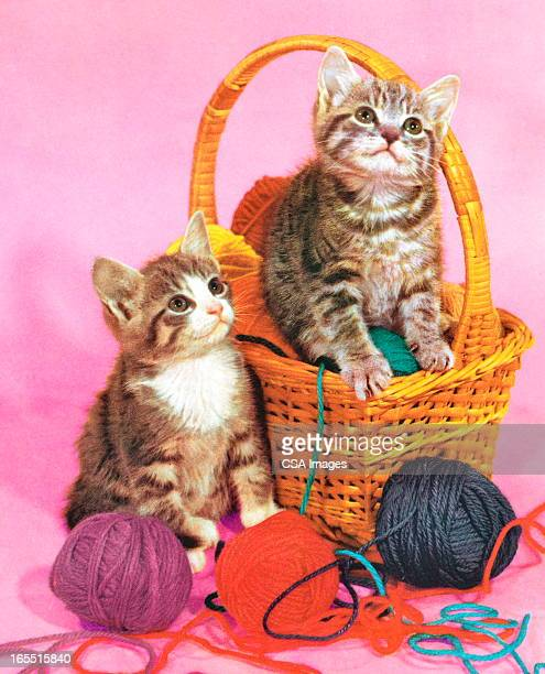 two kittens in a basket of yarn - two animals stock illustrations