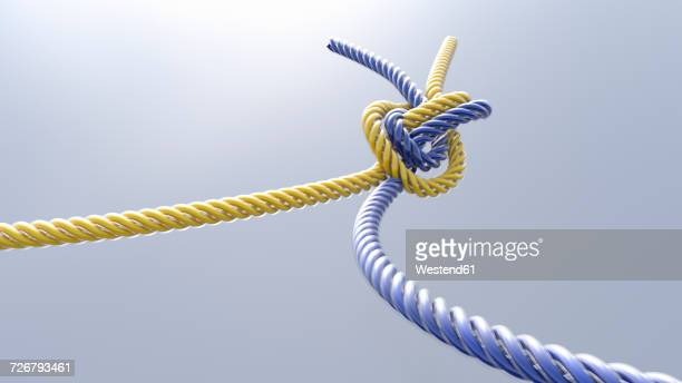 Two knotted cords, 3D Rendering