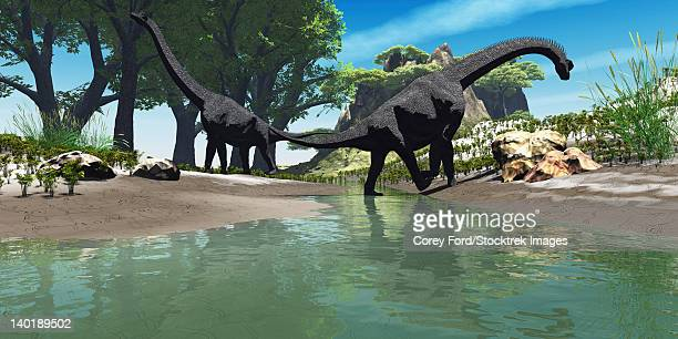 Two large Brachiosaurus dinosaurs look for food along the banks of a stream.