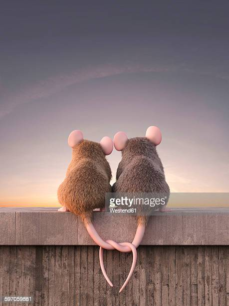 Two mice in love watching sunset, sitting on wall