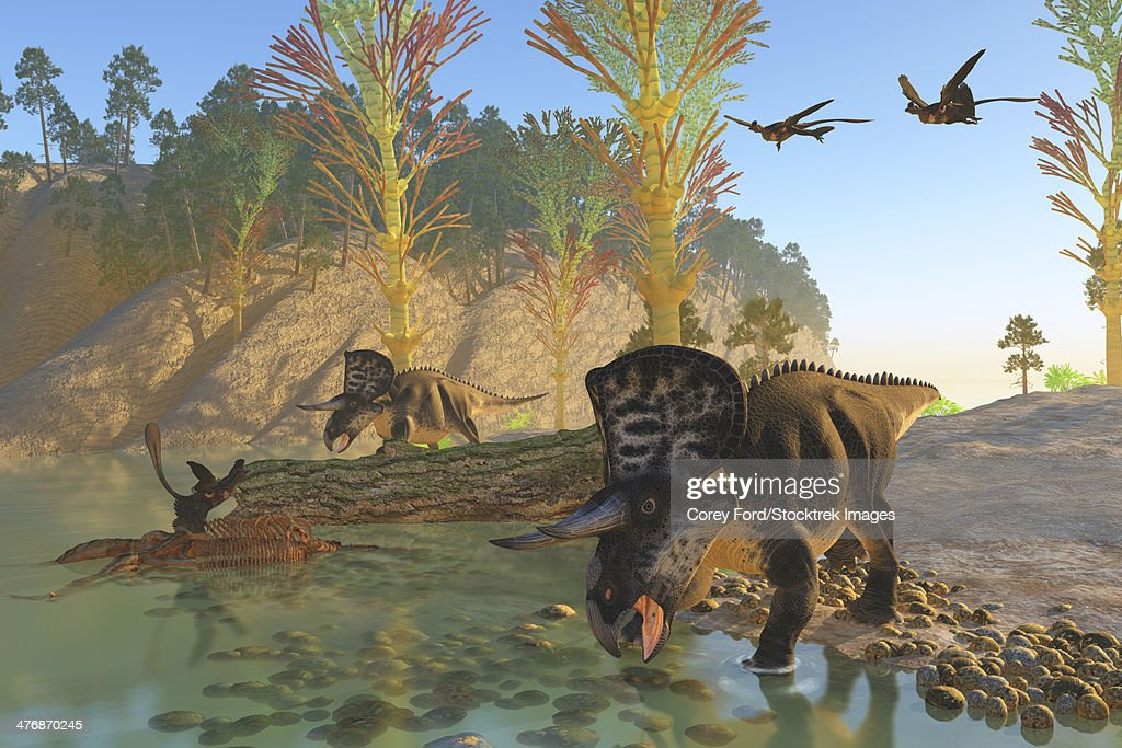 Two Microraptor birds fly in to join another sitting on an old skeleton as Zuniceratops dinosaurs come down to the river for a drink. : stock illustration