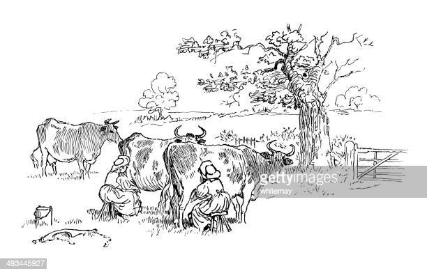 two milkmaids milking cows in a field - milking stock illustrations, clip art, cartoons, & icons